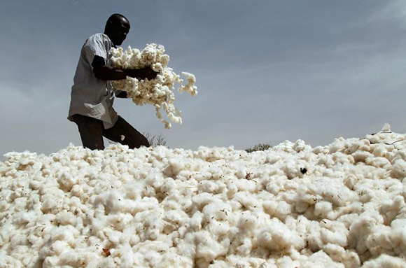 A farmer works in a cotton field in Kongolekan village near Bobo-Dioulasso, Burkina Faso. Photo by Luc Gnago